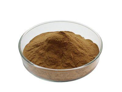 Oranic Maitake Mushroom Extract Powder
