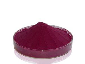 Organic Bilberry Juice Powder
