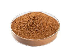 Organic Burdock Root Extract Powder