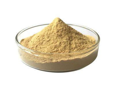 Organic Ginger Extract Powder
