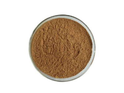 Organic Linden Flower Extract Powder