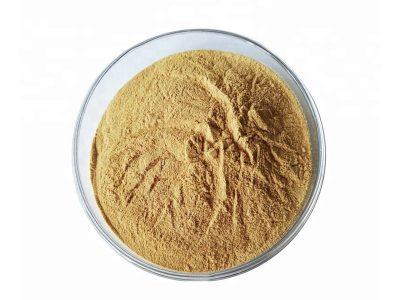 Organic Oats Extract Powder
