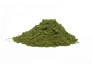 organic buckwheat grass powder
