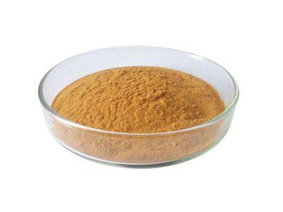 organic shiitake mushroom extract powder