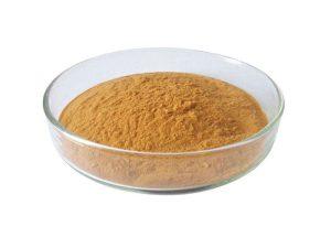 organic shiitake mushroom powder